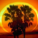 Annular Eclipse May 20th